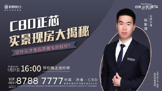 CBD正芯品质奢宅实景现房大揭秘!