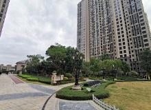 31省份2020年房地产开发投资排行:粤苏浙均超万亿居前三